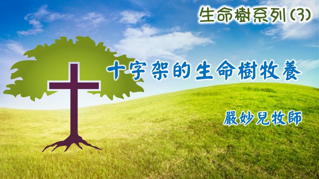 十字架的生命樹牧養